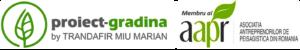 Proiect Gradina - Proiectare si amenajare peisagera,proiectare sisteme irigatii,cascade,drenaje,fantani,amenajari gradini,amenajari spatii verzi,gazonare.